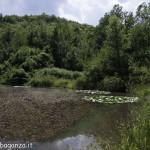 Borgotaro natura (173)