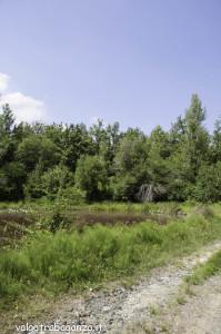 Borgotaro natura (209)