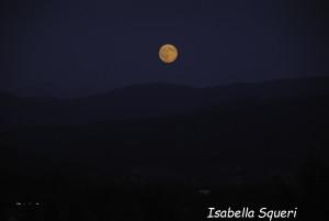 Luna Blu (12) natura-2