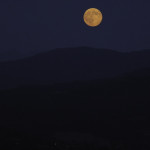 Luna Blu (13) natura-2