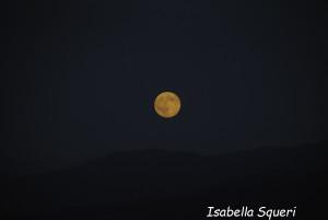 Luna Blu (15) natura