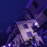 Bedonia (102) notte rosa