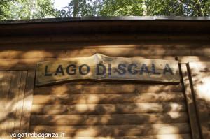 Lago di Scala (108) Comunalia Boschetto