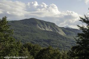 Berceto (118) Monte Cervellino