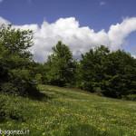 Monte Pelpi (100)