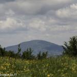 Monte Pelpi (108)
