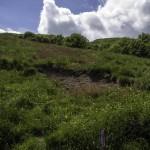 Monte Pelpi (148)