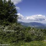 Monte Pelpi (150)
