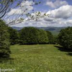 Monte Pelpi (152)