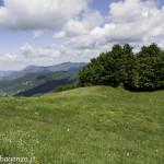 Monte Pelpi (169)