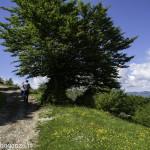 Monte Pelpi (179)