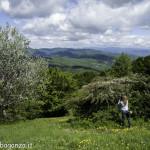 Monte Pelpi (184)