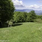 Monte Pelpi (195)