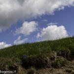 Monte Pelpi (207)