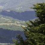 Monte Pelpi (222)