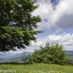 Monte Pelpi (233)