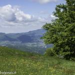 Monte Pelpi (272)