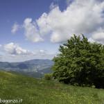 Monte Pelpi (273)