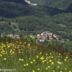 Monte Pelpi (277)