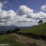 Monte Pelpi (288)