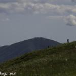Monte Pelpi (296)