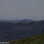 Monte Pelpi (297)