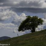 Monte Pelpi (299)