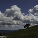 Monte Pelpi (300)