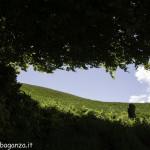 Monte Pelpi (329)