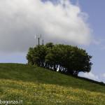 Monte Pelpi (332)