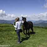 Monte Pelpi (346) cavalli