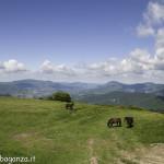 Monte Pelpi (357)