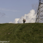 Monte Pelpi (392)