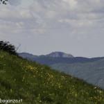 Monte Pelpi (393)
