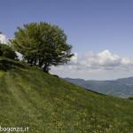 Monte Pelpi (394)