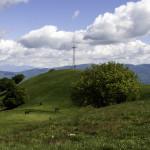 Monte Pelpi (414)