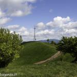 Monte Pelpi (436)