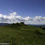 Monte Pelpi (467)