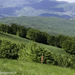 Monte Pelpi (472)
