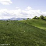 Monte Pelpi (476)
