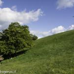 Monte Pelpi (497)