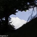 Monte Pelpi (515)