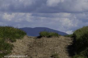 Monte Pelpi (516)