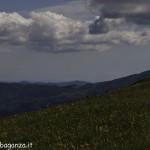 Monte Pelpi (526)