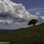 Monte Pelpi (527)