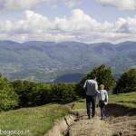 Monte Pelpi (530)
