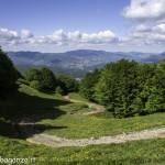 Monte Pelpi (531)