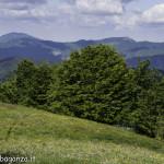 Monte Pelpi (534)