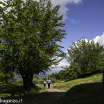 Monte Pelpi (536)