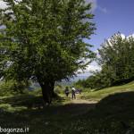 Monte Pelpi (537)